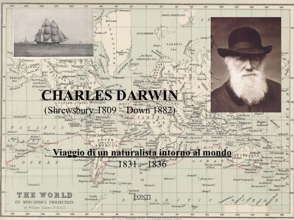 CHARLES DARWIN (Shrewsbury 1809 – Down 1882) Viaggio di un naturalista intorno al mondo 1831 – 1836 FONTI