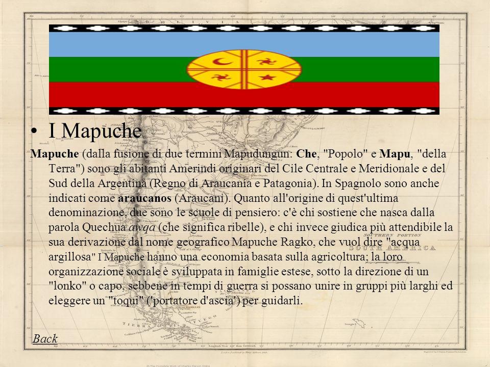 I Mapuche Mapuche (dalla fusione di due termini Mapudungun: Che,