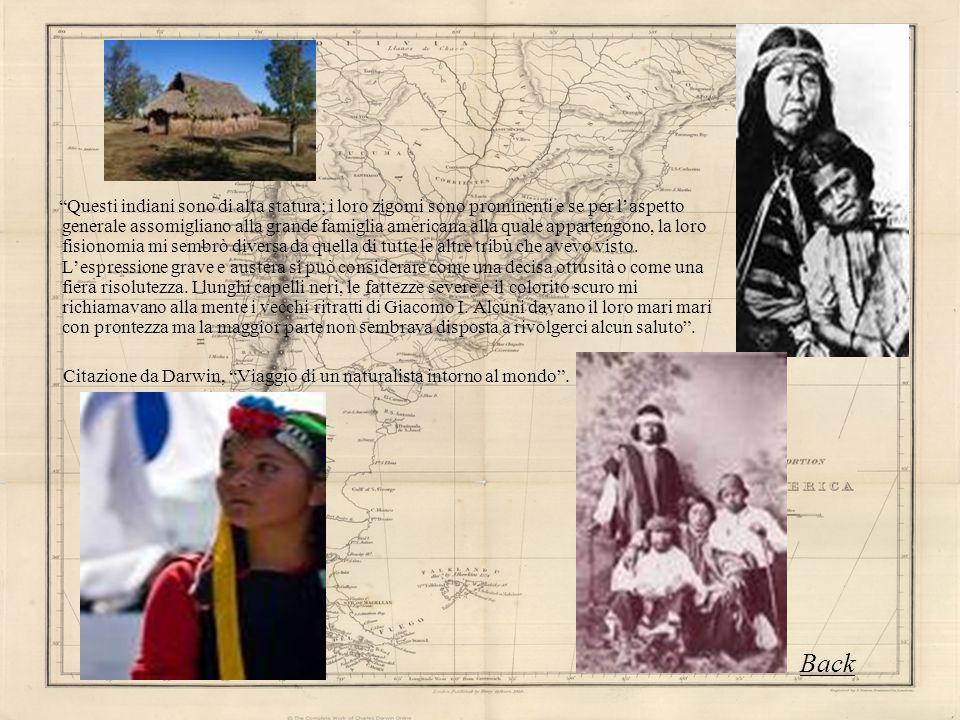 Questi indiani sono di alta statura; i loro zigomi sono prominenti e se per laspetto generale assomigliano alla grande famiglia americana alla quale a