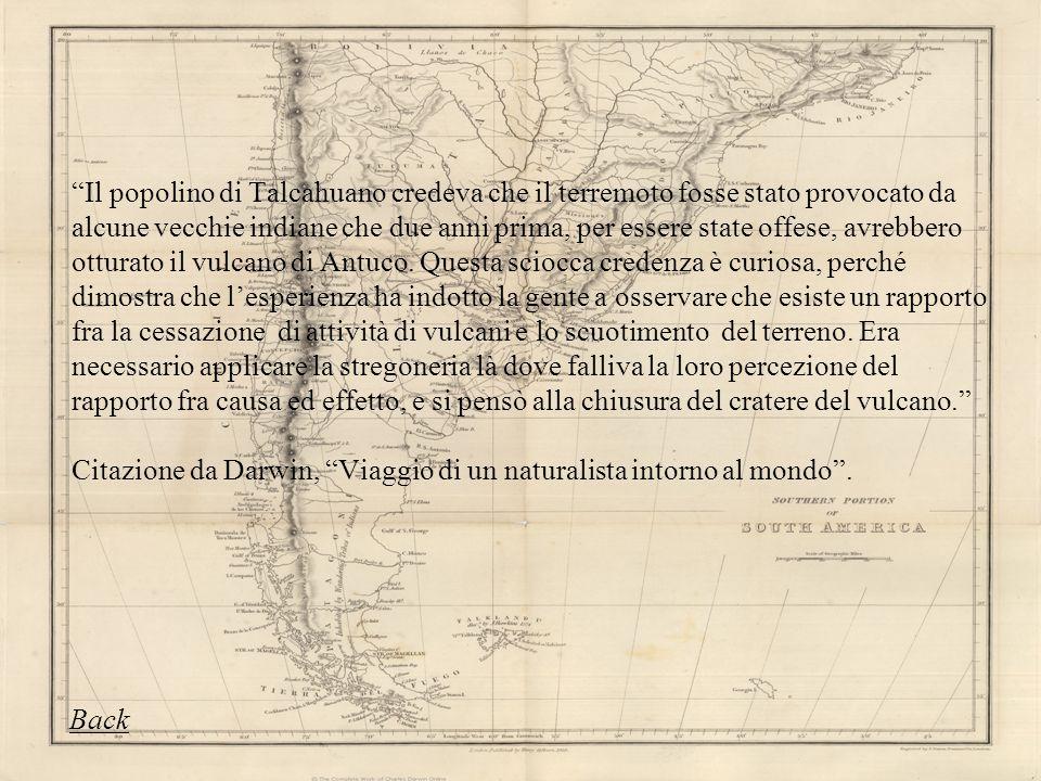 Il popolino di Talcahuano credeva che il terremoto fosse stato provocato da alcune vecchie indiane che due anni prima, per essere state offese, avrebb