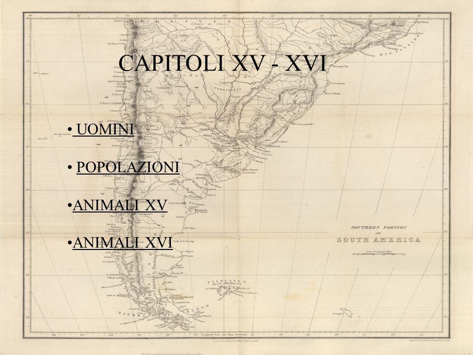 CAPITOLI XV - XVI UOMINI POPOLAZIONI ANIMALI XV ANIMALI XVI