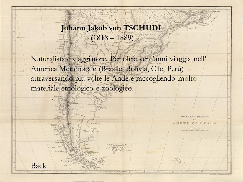 Johann Jakob von TSCHUDI (1818 – 1889) Naturalista e viaggiatore. Per oltre ventanni viaggia nell America Meridionale (Brasile, Bolivia, Cile, Perù) a