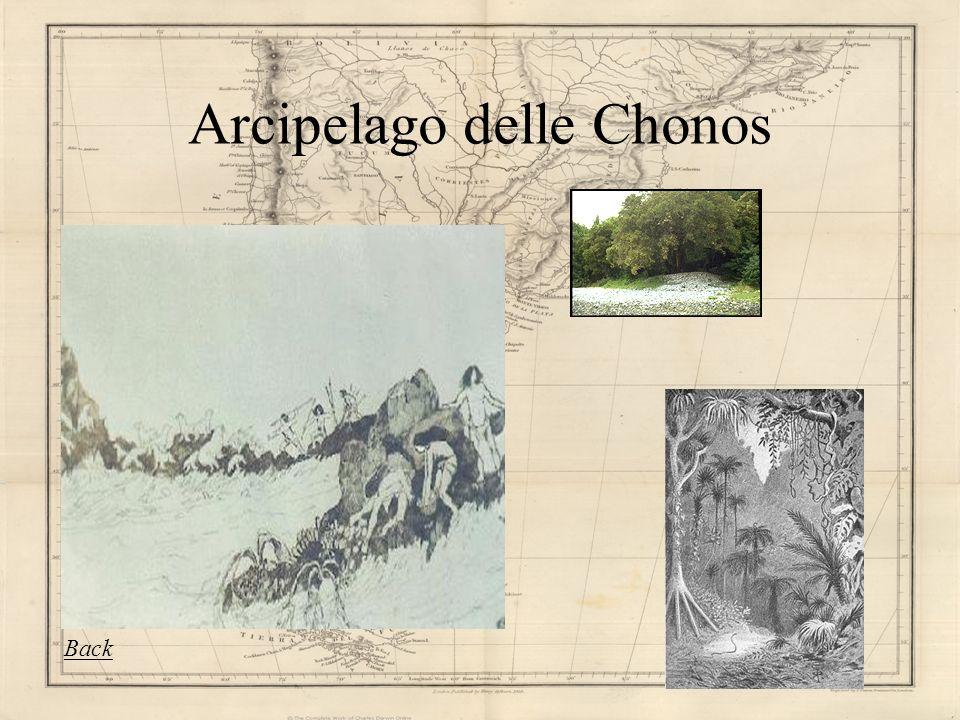 Chiloe, isola delle Chonos E nella decima regione che il Cile inizia a perdere la propria solidità continentale, disgregandosi in una miriade disole e disolotti australi.