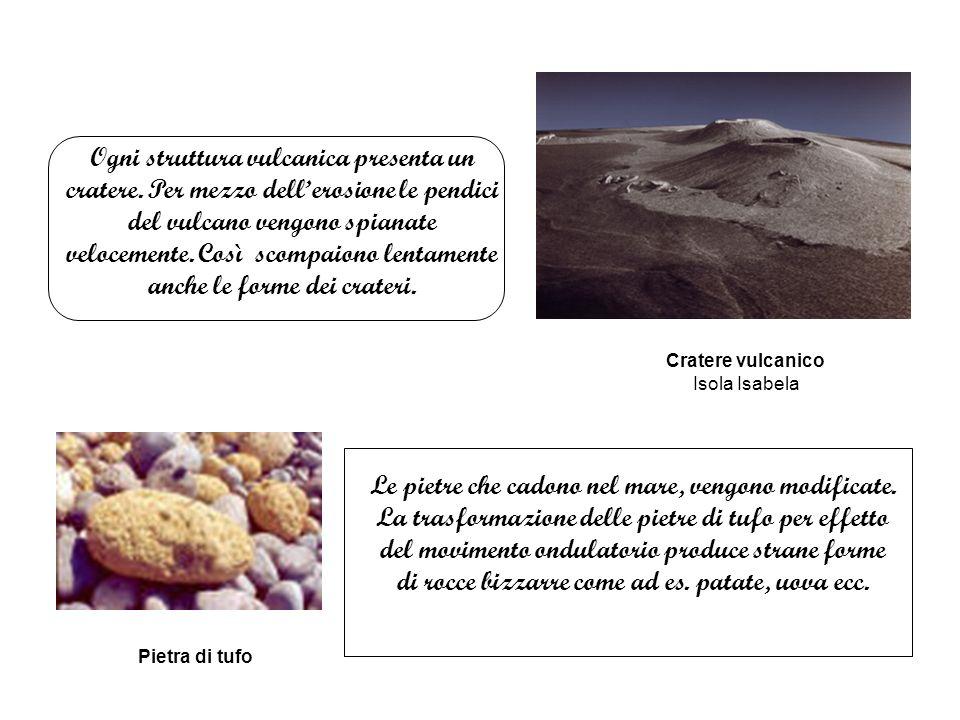 Ogni struttura vulcanica presenta un cratere.