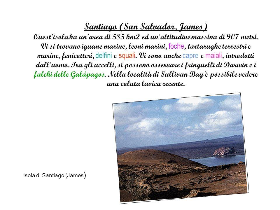 Santiago (San Salvador, James) Quest isola ha un area di 585 km2 ed un altitudine massina di 907 metri.