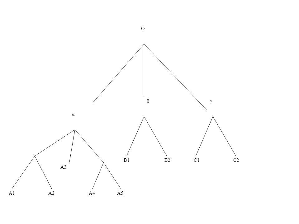 A1 A2 A4 A5 α βγ B1 B2 C1 C2 O A3