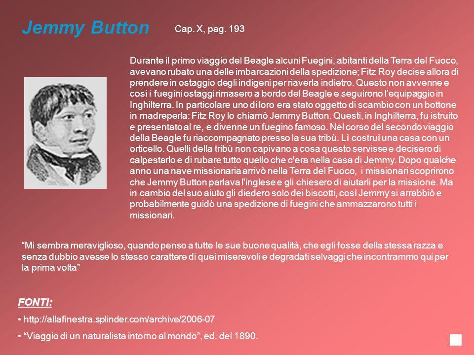 Jemmy Button Durante il primo viaggio del Beagle alcuni Fuegini, abitanti della Terra del Fuoco, avevano rubato una delle imbarcazioni della spedizion