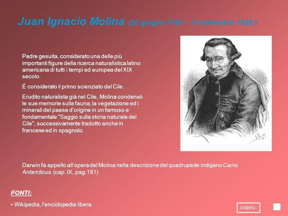 Juan Ignacio Molina (20 giugno 1740 – 13 settembre 1829 ) Padre gesuita, considerato una delle più importanti figure della ricerca naturalistica latin