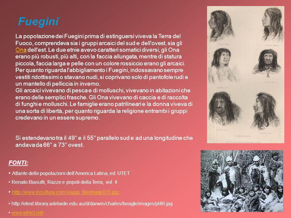 Fuegini La popolazione dei Fuegini prima di estinguersi viveva la Terra del Fuoco, comprendeva sia i gruppi arcaici del sud e dell'ovest, sia gli Ona