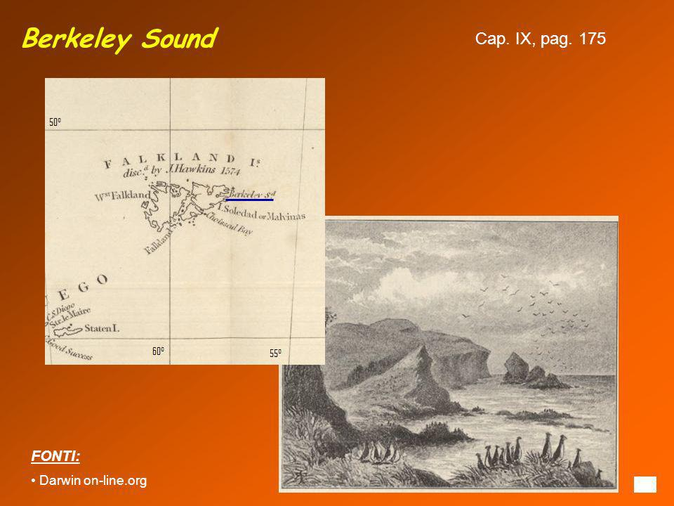 Berkeley Sound FONTI: Darwin on-line.org Cap. IX, pag. 175