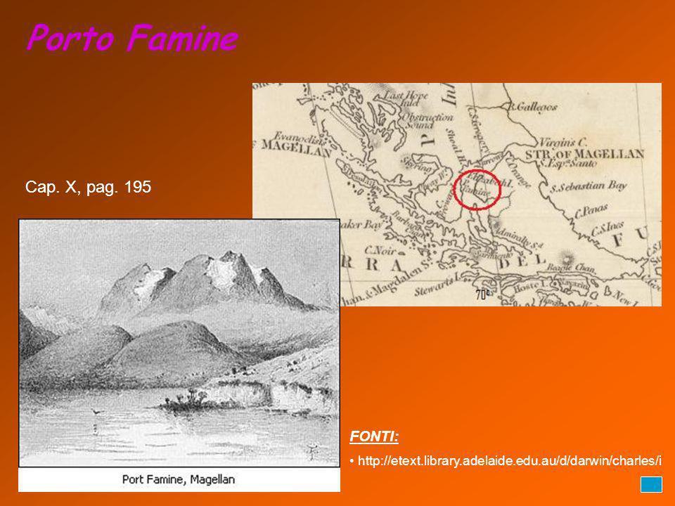 Porto Famine FONTI: http://etext.library.adelaide.edu.au/d/darwin/charles/i Cap. X, pag. 195