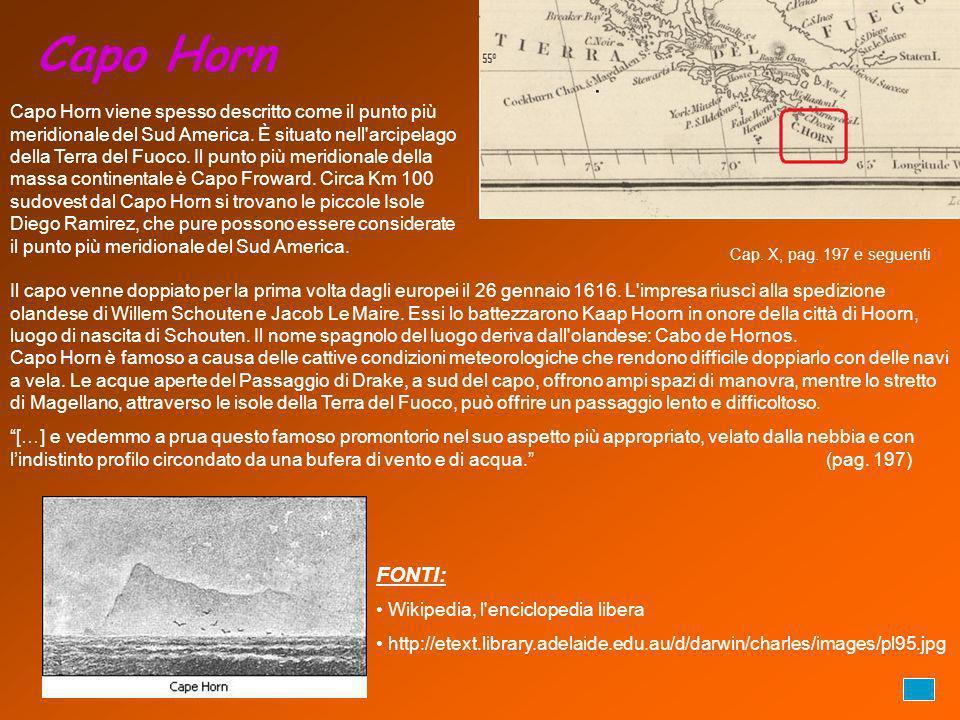 Capo Horn Capo Horn viene spesso descritto come il punto più meridionale del Sud America. È situato nell'arcipelago della Terra del Fuoco. Il punto pi