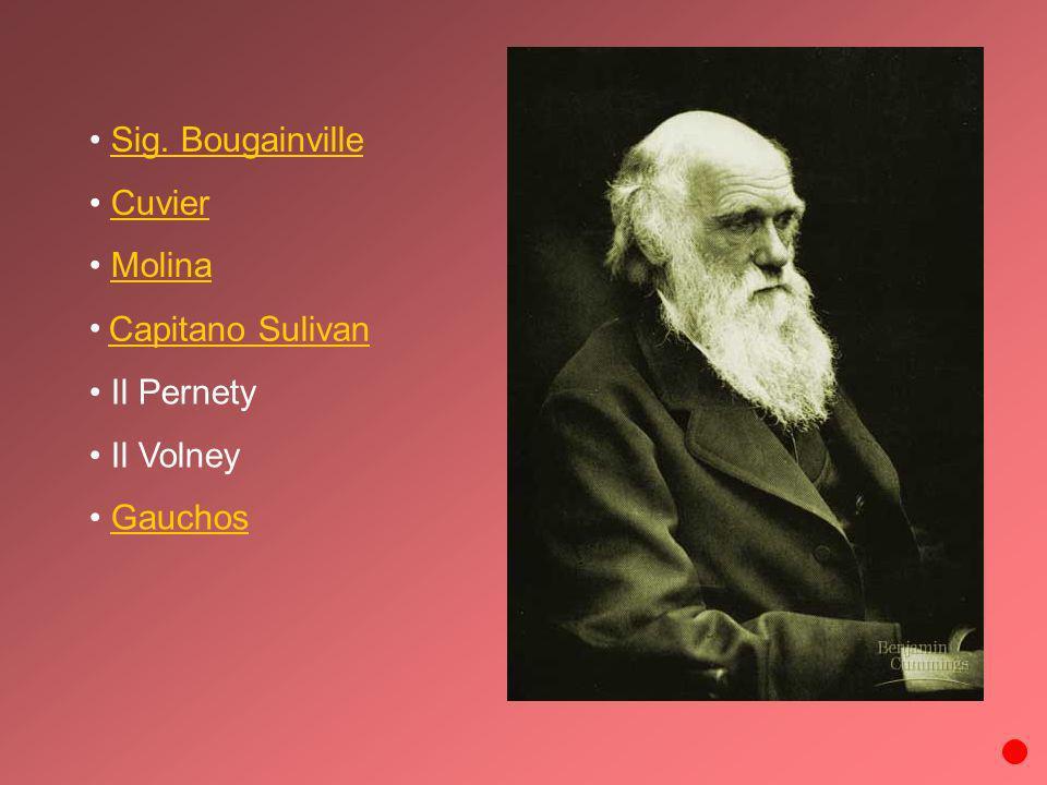 Sig. Bougainville Cuvier Molina Il Pernety Il Volney Gauchos Capitano Sulivan