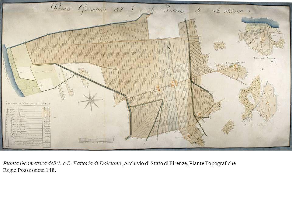 Pianta Geometrica dellI. e R. Fattoria di Dolciano, Archivio di Stato di Firenze, Piante Topografiche Regie Possessioni 148.