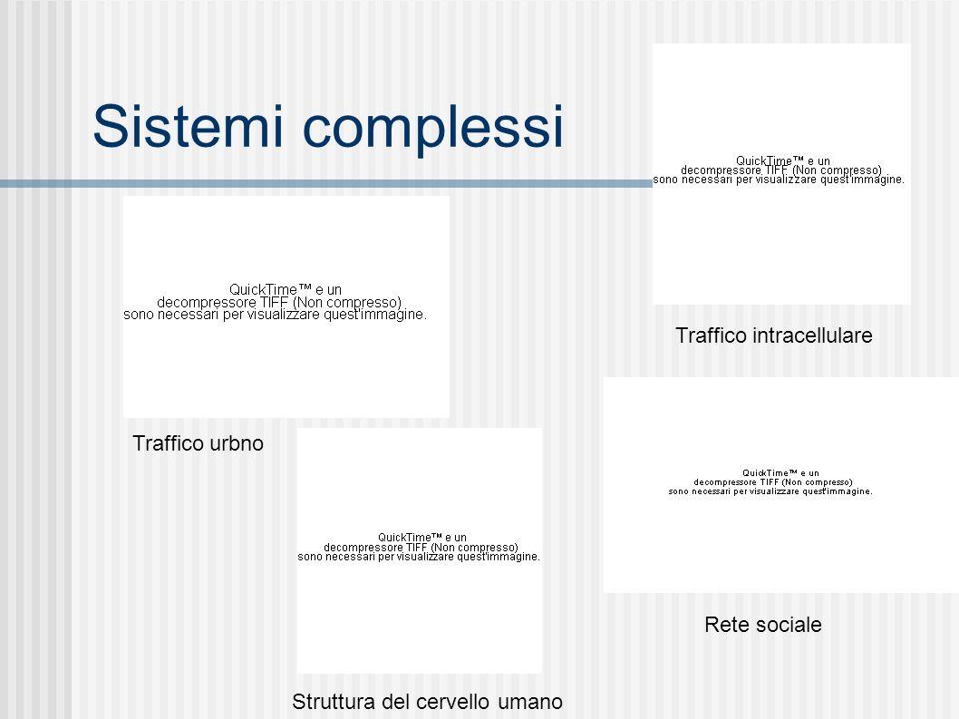 Sistemi complessi Traffico intracellulare Struttura del cervello umano Traffico urbno Rete sociale
