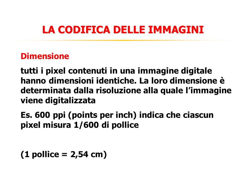 LA CODIFICA DELLE IMMAGINI Dimensione tutti i pixel contenuti in una immagine digitale hanno dimensioni identiche. La loro dimensione è determinata da