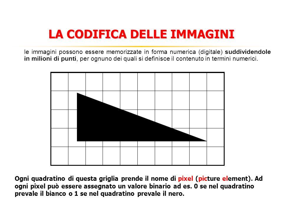 LA CODIFICA DELLE IMMAGINI Ciascun pixel contenuto in una immagine bitmap (mappa di bit) o raster (insieme di linee orizzontali tracciate elettronicamente) possiede quattro propietà fondamentali: Dimensione tonalità Profondità di colore Posizione