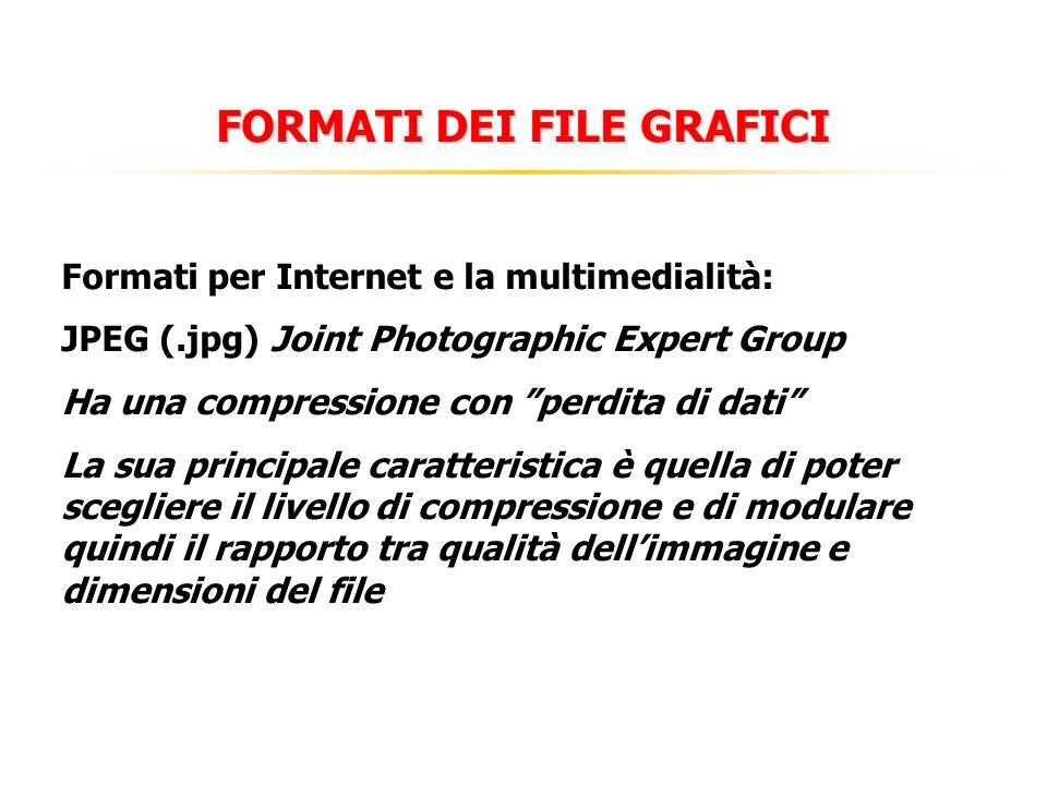 FORMATI DEI FILE GRAFICI Formati per Internet e la multimedialità: JPEG (.jpg)Joint Photographic Expert Group Ha una compressione con perdita di dati La sua principale caratteristica è quella di poter scegliere il livello di compressione e di modulare quindi il rapporto tra qualità dellimmagine e dimensioni del file