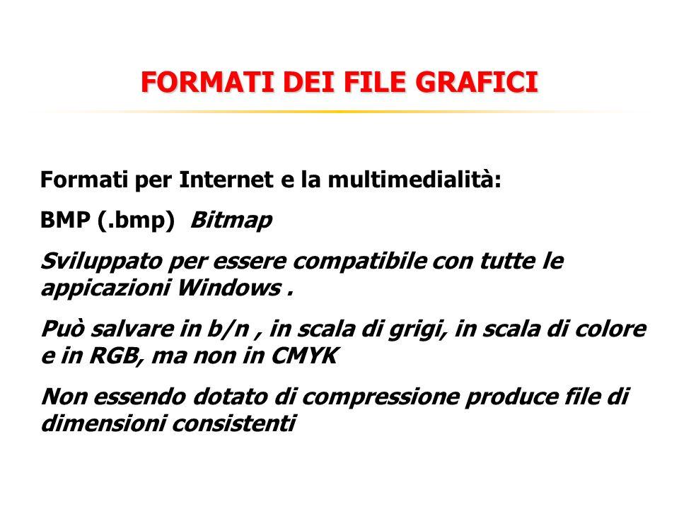FORMATI DEI FILE GRAFICI Formati per Internet e la multimedialità: BMP (.bmp) Bitmap Sviluppato per essere compatibile con tutte le appicazioni Windows.