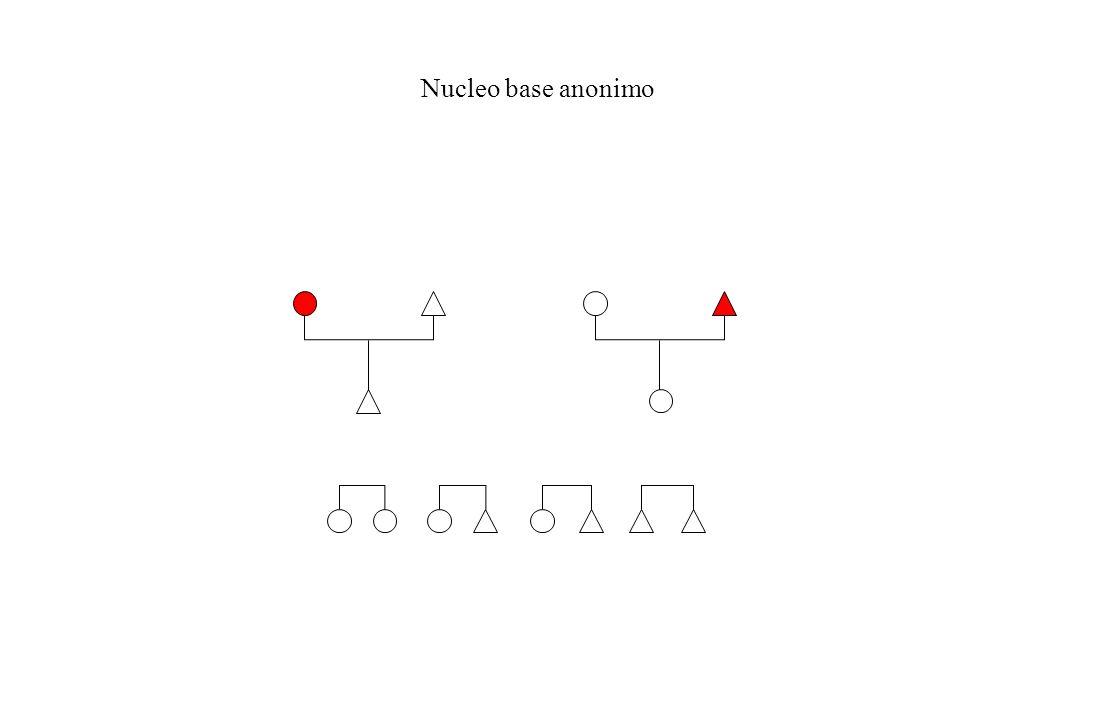 Nucleo base anonimo