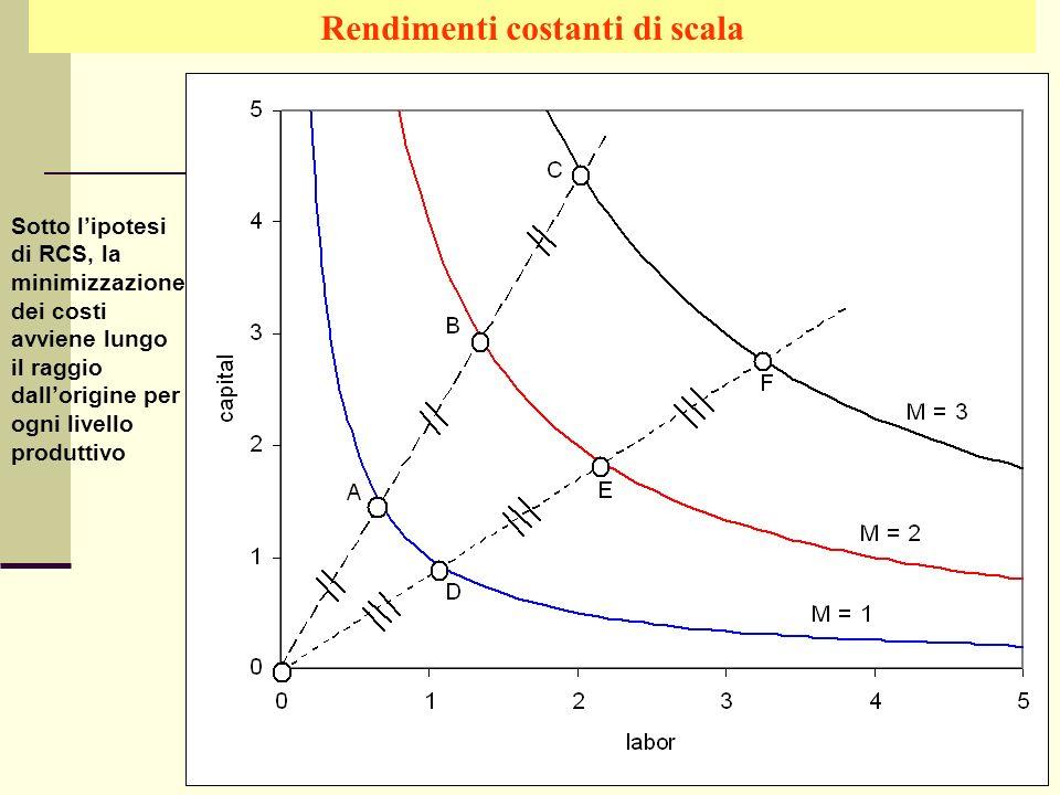 Giuseppe Celi IEG 2006 Rendimenti costanti di scala Sotto lipotesi di RCS, la minimizzazione dei costi avviene lungo il raggio dallorigine per ogni li