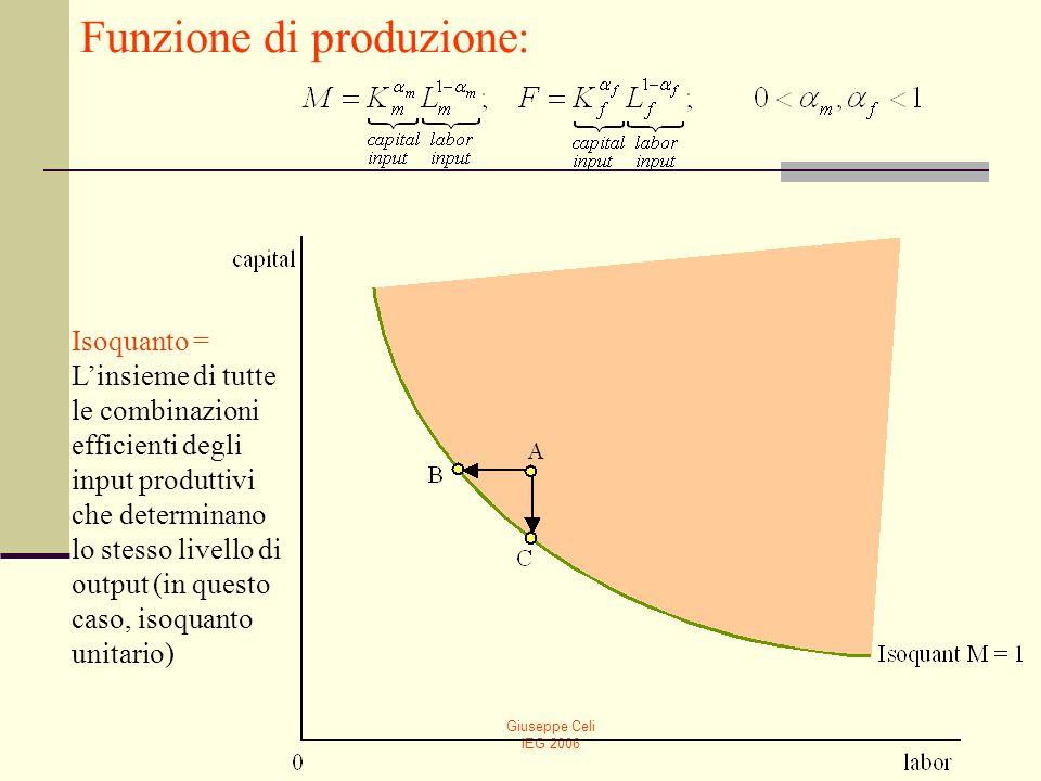 Giuseppe Celi IEG 2006 Isoquanto = Linsieme di tutte le combinazioni efficienti degli input produttivi che determinano lo stesso livello di output (in
