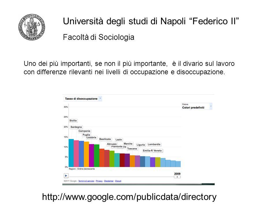 Facoltà di Sociologia Università degli studi di Napoli Federico II Uno dei più importanti, se non il più importante, è il divario sul lavoro con differenze rilevanti nei livelli di occupazione e disoccupazione.