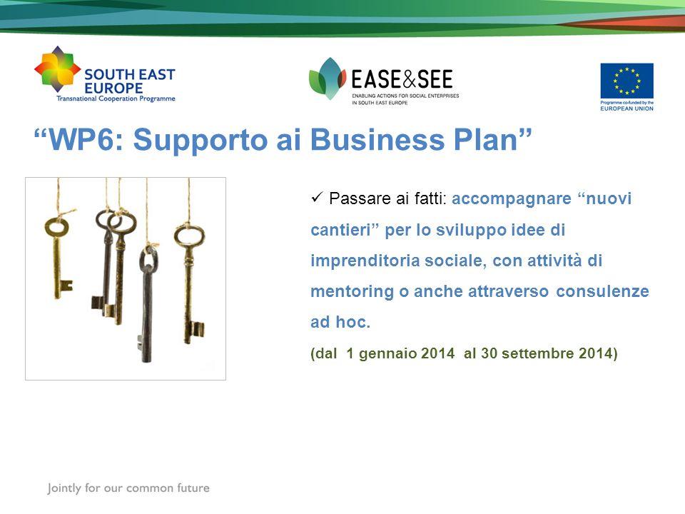 WP6: Supporto ai Business Plan Passare ai fatti: accompagnare nuovi cantieri per lo sviluppo idee di imprenditoria sociale, con attività di mentoring