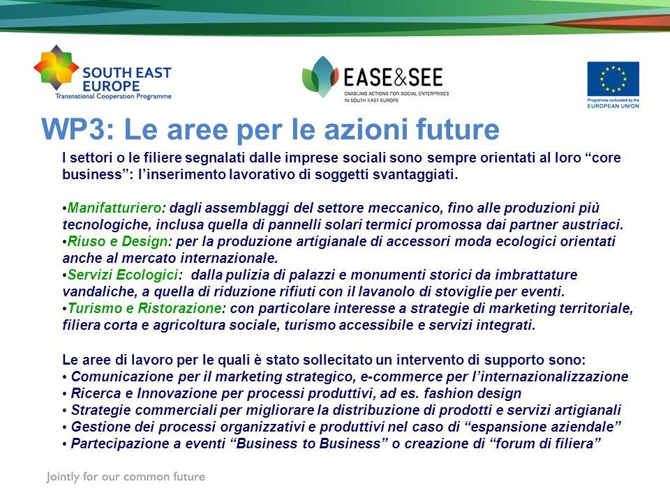 WP3: Le aree per le azioni future I settori o le filiere segnalati dalle imprese sociali sono sempre orientati al loro core business: linserimento lav