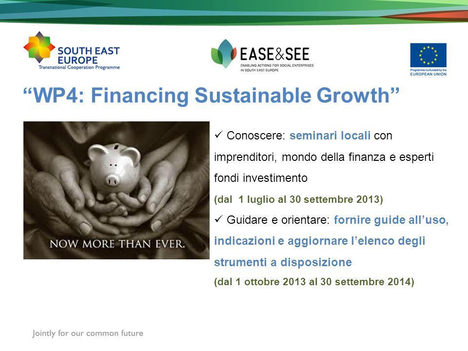 WP4: Financing Sustainable Growth Conoscere: seminari locali con imprenditori, mondo della finanza e esperti fondi investimento (dal 1 luglio al 30 settembre 2013) Guidare e orientare: fornire guide alluso, indicazioni e aggiornare lelenco degli strumenti a disposizione (dal 1 ottobre 2013 al 30 settembre 2014)