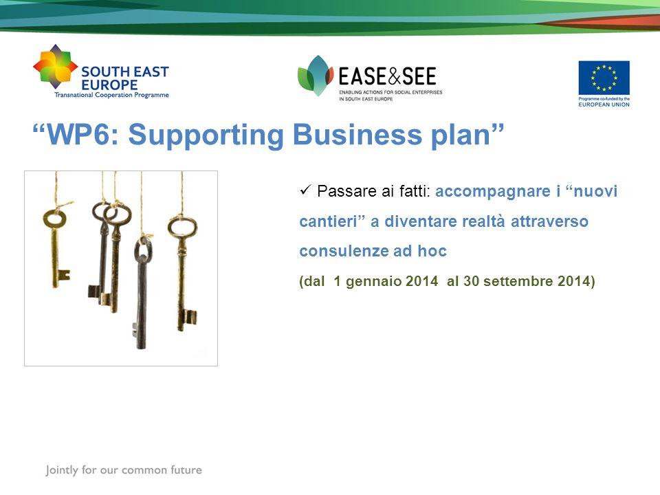 WP6: Supporting Business plan Passare ai fatti: accompagnare i nuovi cantieri a diventare realtà attraverso consulenze ad hoc (dal 1 gennaio 2014 al 30 settembre 2014)