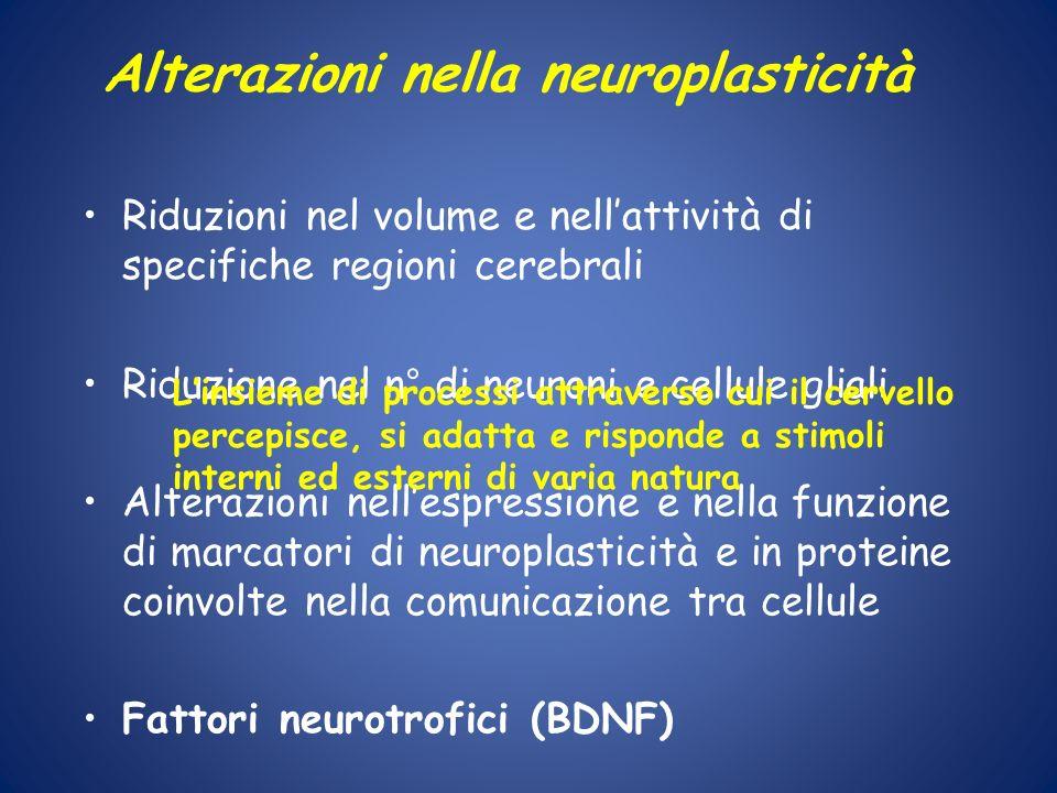 Alterazioni nella neuroplasticità Riduzioni nel volume e nellattività di specifiche regioni cerebrali Riduzione nel n° di neuroni e cellule gliali Alt