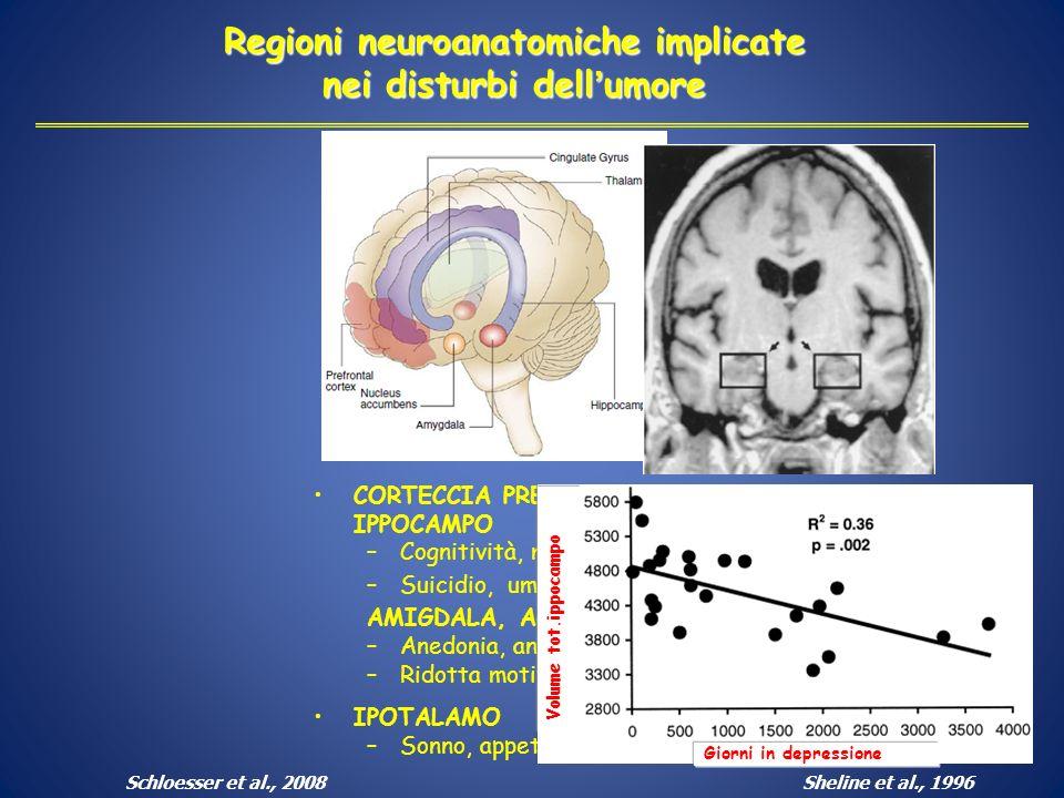 Regioni neuroanatomiche implicate nei disturbi dellumore CORTECCIA PREFRONTALE, IPPOCAMPO –Cognitività, memoria –Suicidio, umore AMIGDALA, ACCUMBENS –