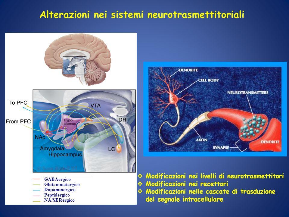 GABAergico Glutammatergico Dopaminergico Peptidergico NA/SERergico Alterazioni nei sistemi neurotrasmettitoriali Modificazioni nei livelli di neurotra