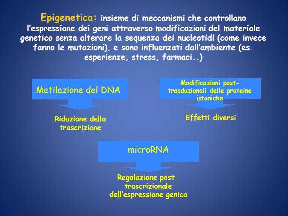 Metilazione del DNA Riduzione della trascrizione microRNA Regolazione post- trascrizionale dellespressione genica Epigenetica: insieme di meccanismi c
