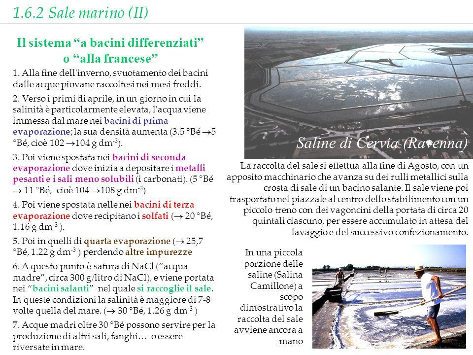 Saline di Cervia (Ravenna) In una piccola porzione delle saline (Salina Camillone) a scopo dimostrativo la raccolta del sale avviene ancora a mano La