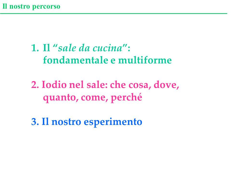 Il nostro percorso 1.Il sale da cucina: fondamentale e multiforme 2. Iodio nel sale: che cosa, dove, quanto, come, perché 3. Il nostro esperimento