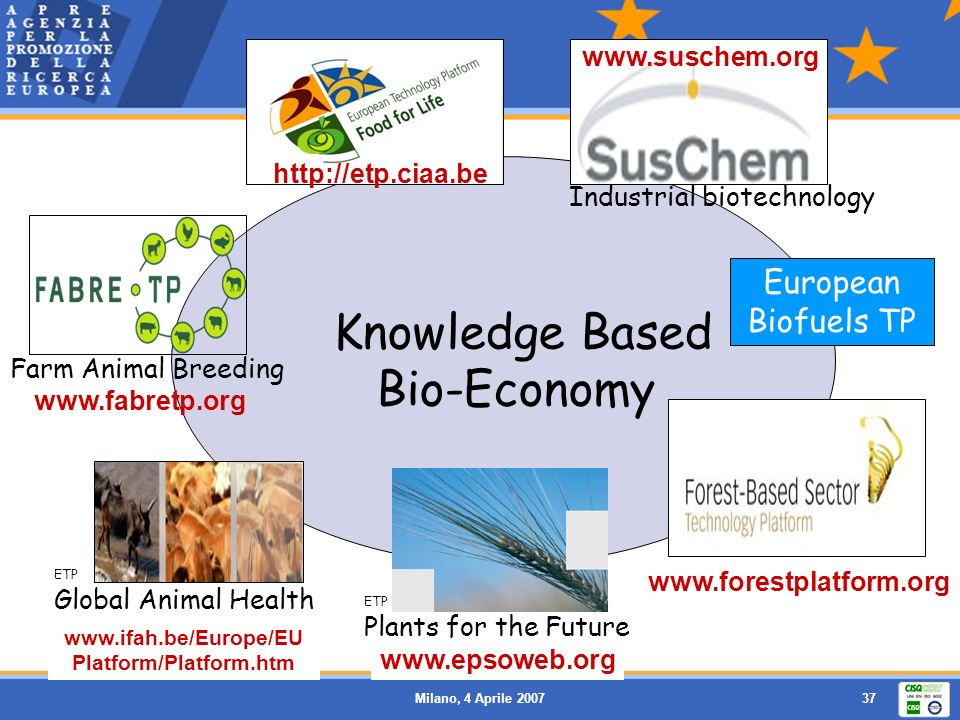 Milano, 4 Aprile 200737 European Biofuels TP ETP Plants for the Future ETP Global Animal Health Knowledge Based Bio-Economy Farm Animal Breeding Indus