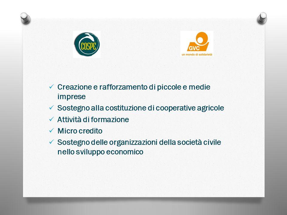 Creazione e rafforzamento di piccole e medie imprese Sostegno alla costituzione di cooperative agricole Attività di formazione Micro credito Sostegno delle organizzazioni della società civile nello sviluppo economico