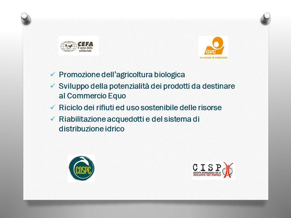 Promozione dellagricoltura biologica Sviluppo della potenzialità dei prodotti da destinare al Commercio Equo Riciclo dei rifiuti ed uso sostenibile delle risorse Riabilitazione acquedotti e del sistema di distribuzione idrico