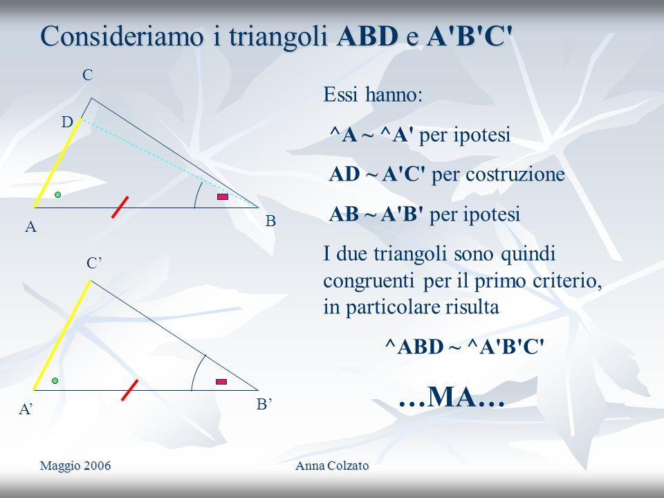 Maggio 2006Anna Colzato Consideriamo i triangoli ABD e A'B'C' C A B C A B Essi hanno: ^A ~ ^A' per ipotesi AD ~ A'C' per costruzione AB ~ A'B' per ipo