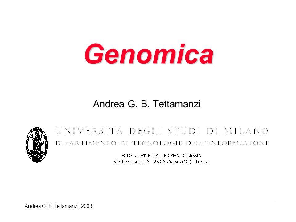Andrea G.B. Tettamanzi, 2003 Genomica e riconoscimento dei geni Problema: come leggere il genoma.