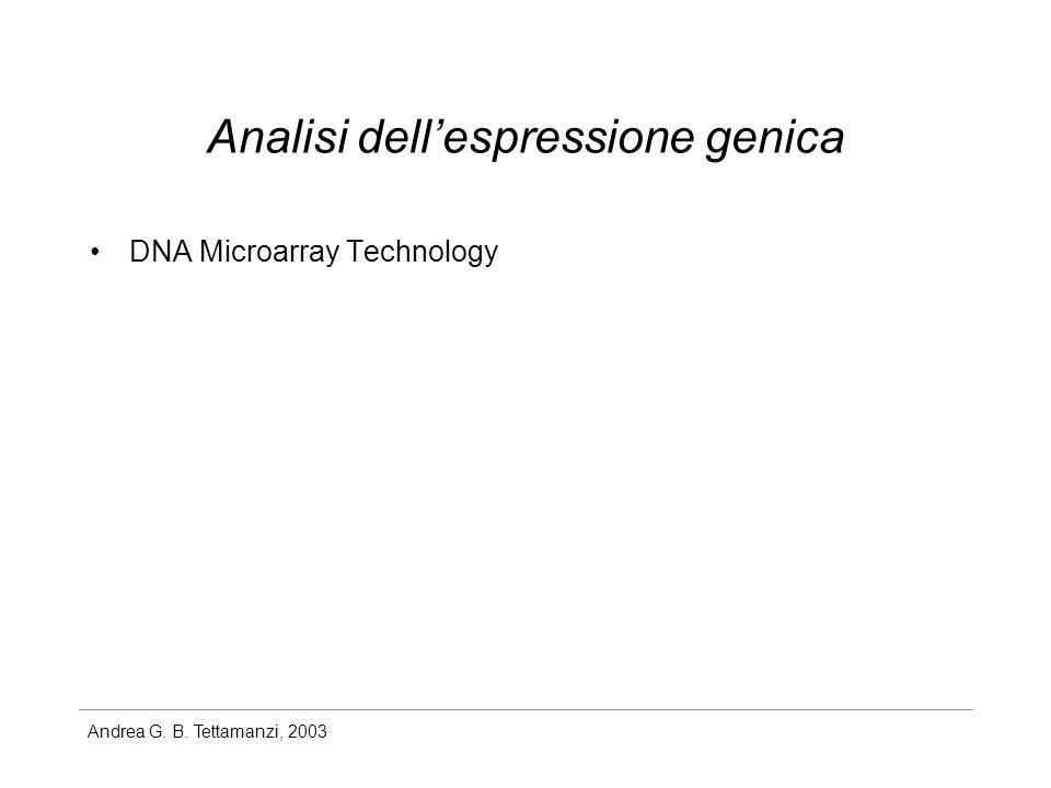 Andrea G. B. Tettamanzi, 2003 Analisi dellespressione genica DNA Microarray Technology