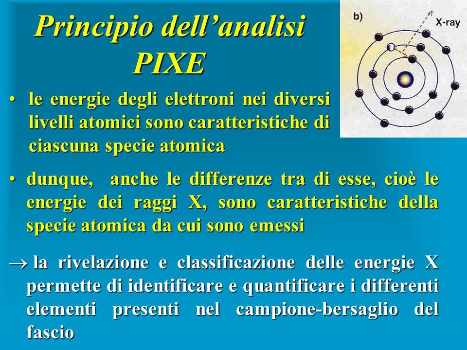 Principio dellanalisi PIXE dunque, anche le differenze tra di esse, cioè le energie dei raggi X, sono caratteristiche della specie atomica da cui sono