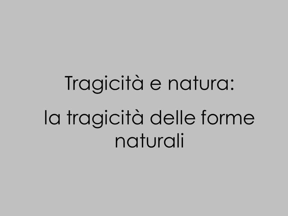 Tragicità e natura: la tragicità delle forme naturali