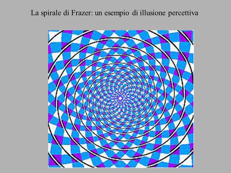 La spirale di Frazer: un esempio di illusione percettiva