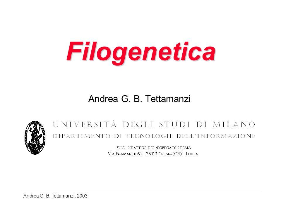 Andrea G. B. Tettamanzi, 2003 Filogenetica Andrea G. B. Tettamanzi