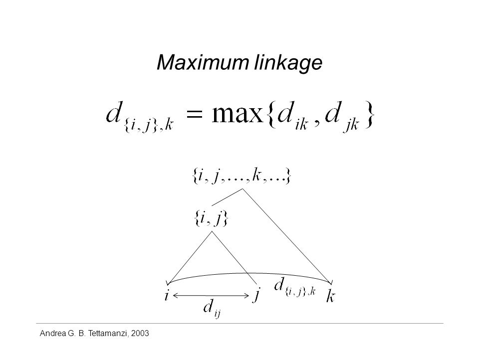 Andrea G. B. Tettamanzi, 2003 Maximum linkage
