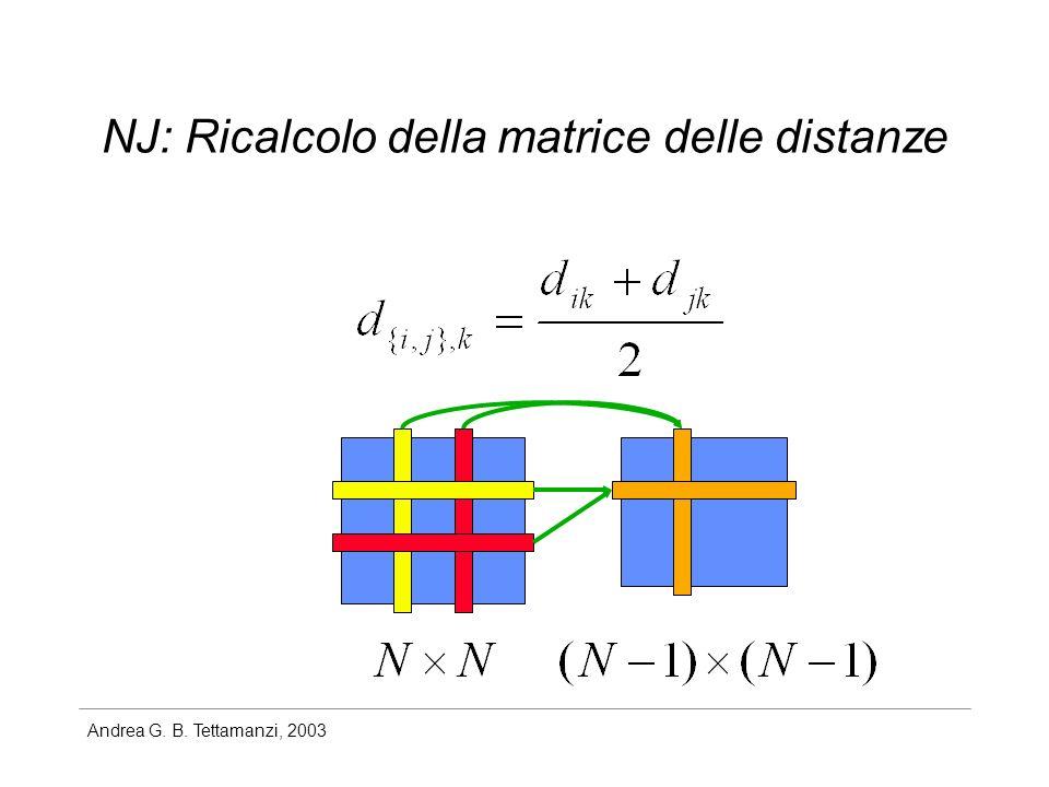Andrea G. B. Tettamanzi, 2003 NJ: Ricalcolo della matrice delle distanze