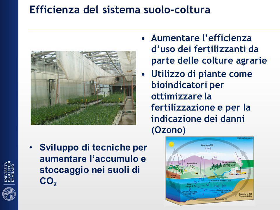 Efficienza del sistema suolo-coltura Aumentare lefficienza duso dei fertilizzanti da parte delle colture agrarie Utilizzo di piante come bioindicatori